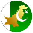 Stock Vector: Button Pakistan