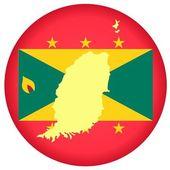 Button Grenada — Stock Vector
