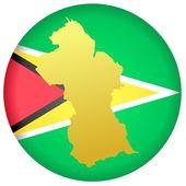 Button Guyana — Stock Vector