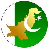 Button Pakistan — Stock Vector