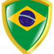 Emblem of Brazil - Stock Vector