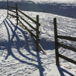 Picket fence — Stock Photo