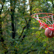 Basketball ball — Stock Photo #1306908
