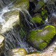 Stock Photo: Stone as heart lies waterfall