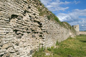 Old fortification wall with a grass — Stock Photo