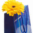 Paper bag for gifts — Stock Photo