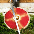 sword and shield — Stock Photo