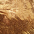 Abstract background of gold brocade — Stock Photo