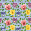Seamless pansies background - Stock Photo