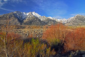 Snow capped Mount Whitney Peak — Stock Photo