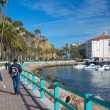 Stock Photo: Travel CatalinIsland