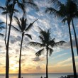 Sunset at Waikiki Beach — Stock Photo