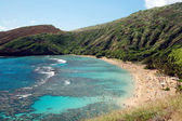 Hanauma Bay Reef beach Honolulu Hawaii — Stock Photo