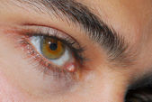 Hazel Eyes — Stock Photo