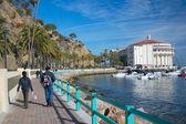 Travel Catalina Island — Stock Photo