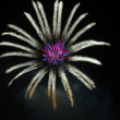 Fireworks flower pattern — Stock Photo