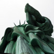 Statue of Liberty — Stock Photo #1307122