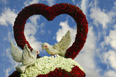 Valentine birds and rose flower heart — Stock Photo
