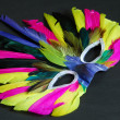 Colorful feather mask — Stock Photo