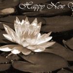 Happy New Year 2008 sepia — Stock Photo