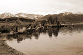 Mono Lake Landscape — Stock Photo