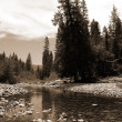 Yosemite Water stream Scenery Yosemite National — Stock Photo