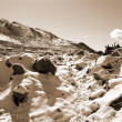 Snowfall landscape sepia — Stock Photo