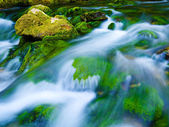 Mountain stream — Foto Stock
