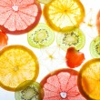Slices citrus on white background — Stock Photo #1312145