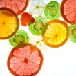 Slices citrus on white background - Stock Photo