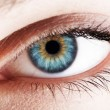 Royalty-Free Stock Photo: Human eye. Macro shot