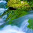 Mountain stream — Stock Photo #1312457