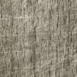 Royalty-Free Stock Photo: Scratched wooden background texture