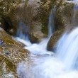 Mountain stream — Stock Photo #1312540