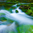 Mountain stream — Stock Photo #1312571