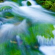 Mountain stream — Stock Photo #1312610