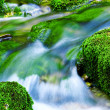 Mountain stream — Stock Photo #1312631
