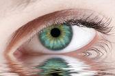 Green human eye reflected — Stock Photo