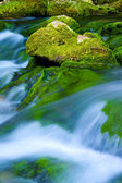 Mountain stream — Foto de Stock