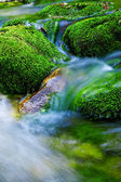Mountain stream — Stock Photo