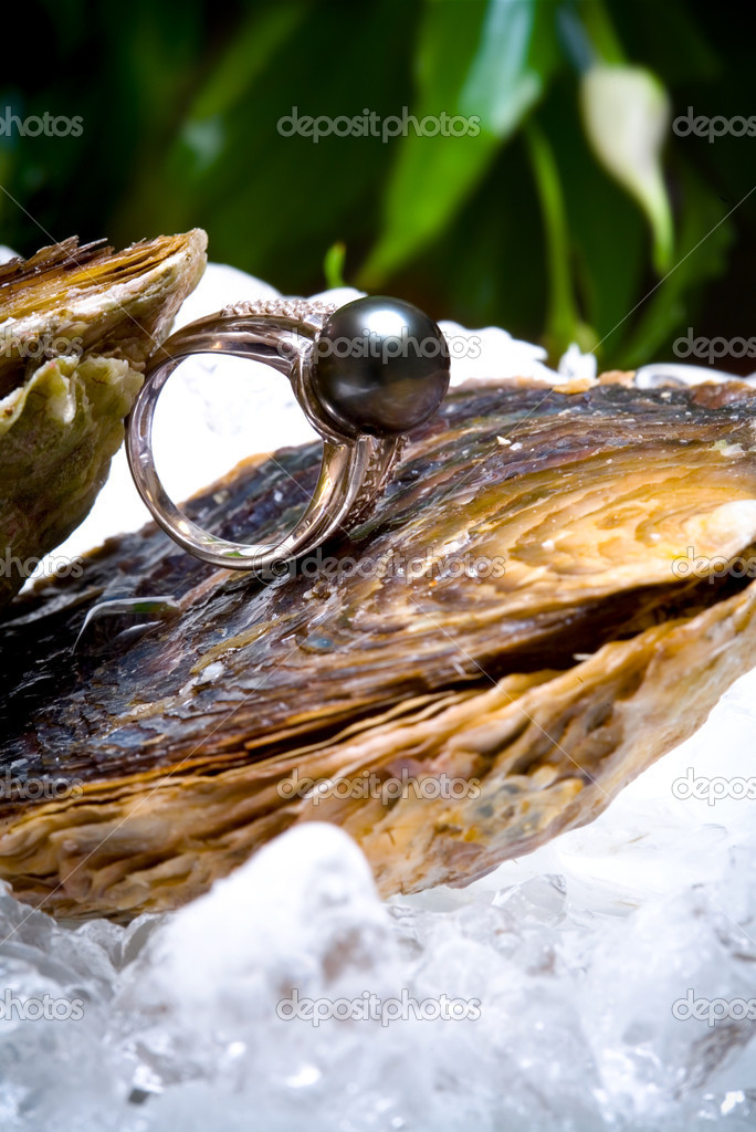 White gold ring with the black pearl and diamons peaced on shell — Stock Photo #1312470