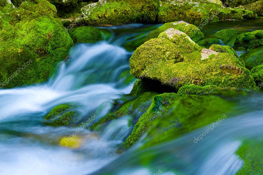 Water stream in a forest, shot made using tripod and long exposure. — Stock Photo #1312491