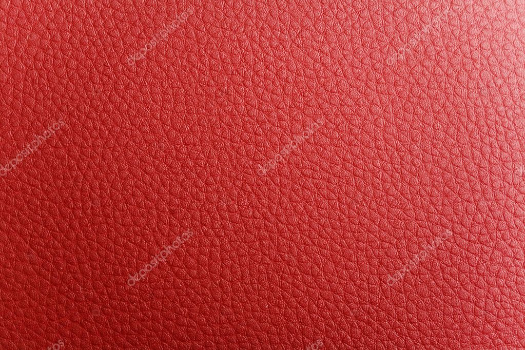 Red feather  Stock Photo #1312515