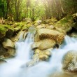 Beautiful waterfall in mountain wood, su - Stock Photo