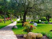 Fiori di primavera nel giardino asiatico — Foto Stock
