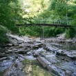 Small mountain river flows under bridge — Stock Photo