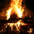 Royalty-Free Stock Photo: Bonfire on a dark background