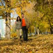 Royalty-Free Stock Photo: Young couple walking in the park
