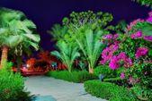 Egypt resort in night — Stock Photo