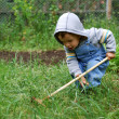 Small boy with rake — Stock Photo